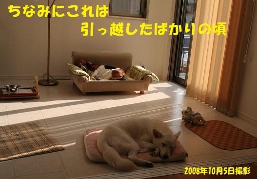f0121712_15324277.jpg