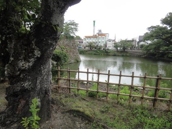 12番 会津若松城_b0268916_04581015.jpg