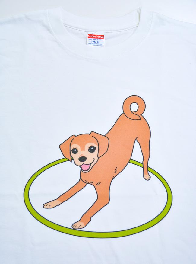 ゲンキくんTシャツ_d0102523_1311768.jpg