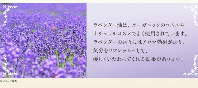 c0103830_17282797.jpg