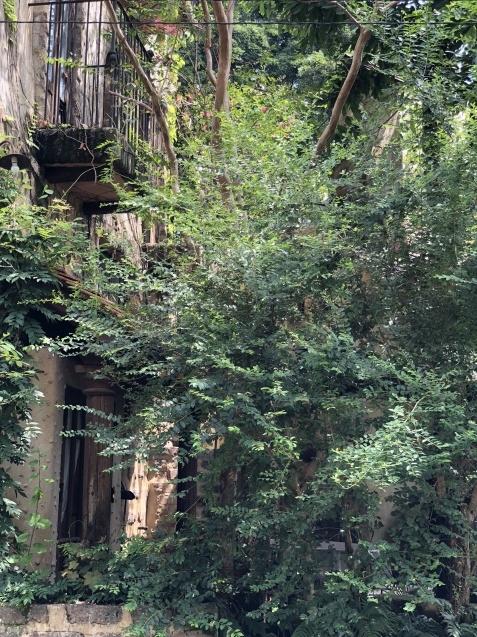 ぬくもりの森へ行ってきました(2)_a0243064_09314694.jpg