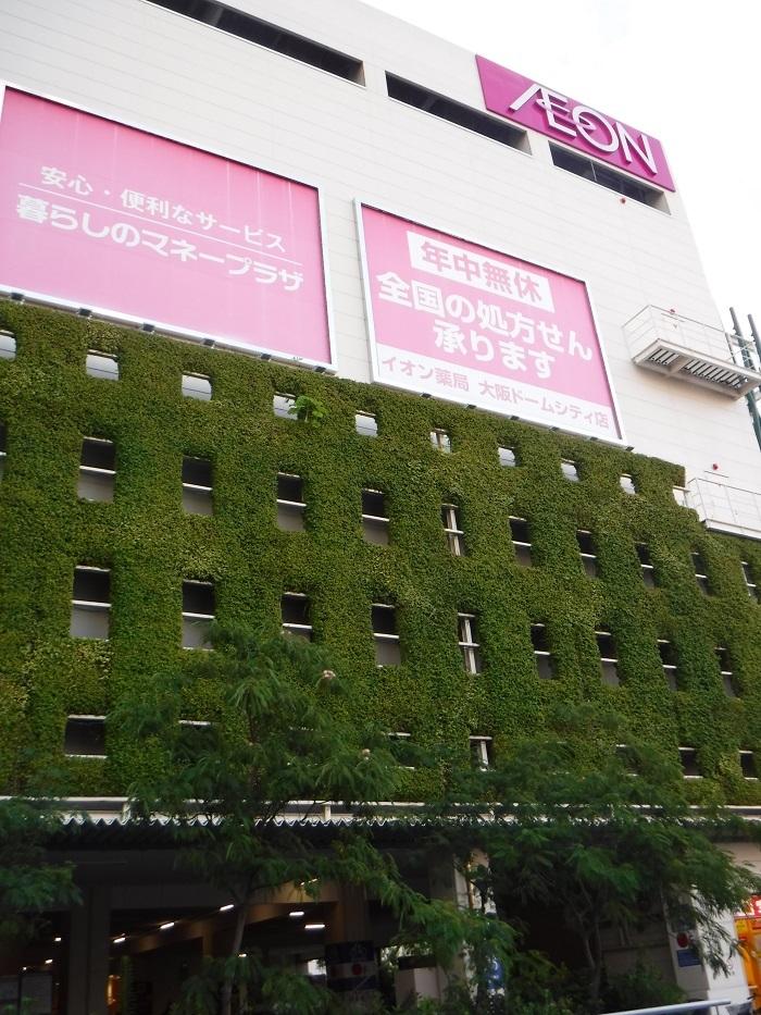◆京セラ大阪ドームプロ野球観戦 ~正しい野球観戦の仕方♪~_f0238779_20513270.jpg