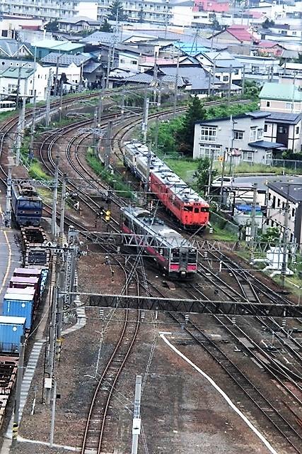 藤田八束の鉄道写真@青森で見つけた花園と貨物列車絶好のコラボトライアングル地帯・・・トライアングル地帯の鉄道写真_d0181492_21162488.jpg