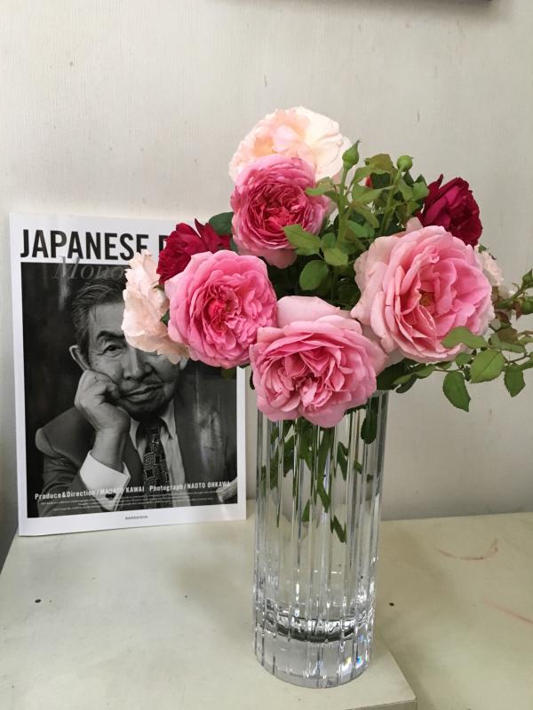 真夏の薔薇に感謝  HT  Rose 「 魅惑 」_c0195496_12142089.jpg