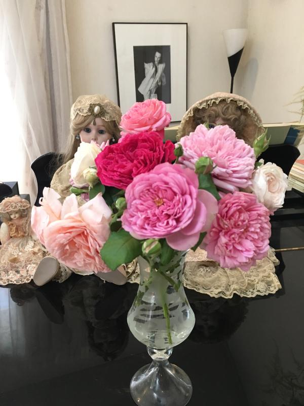 真夏の薔薇に感謝  HT  Rose 「 魅惑 」_c0195496_12142164.jpg