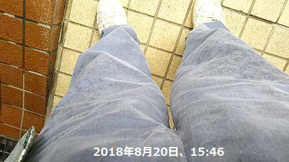 d0051601_10562643.jpg