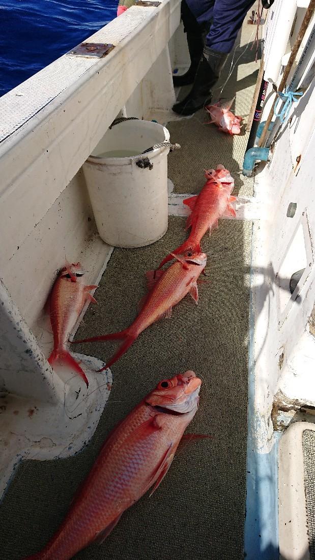 深場釣りアカマチ(ハ..._b0000363_20141532.jpg
