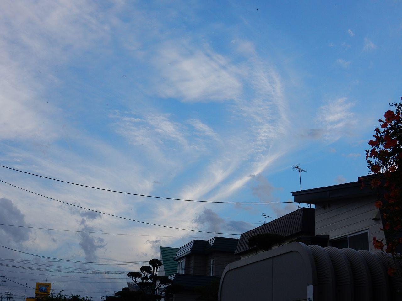 雷雨去り蒸し暑い一日_c0025115_21271598.jpg
