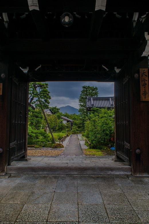 天寧寺~百日紅と額縁の門_e0363038_19290837.jpg