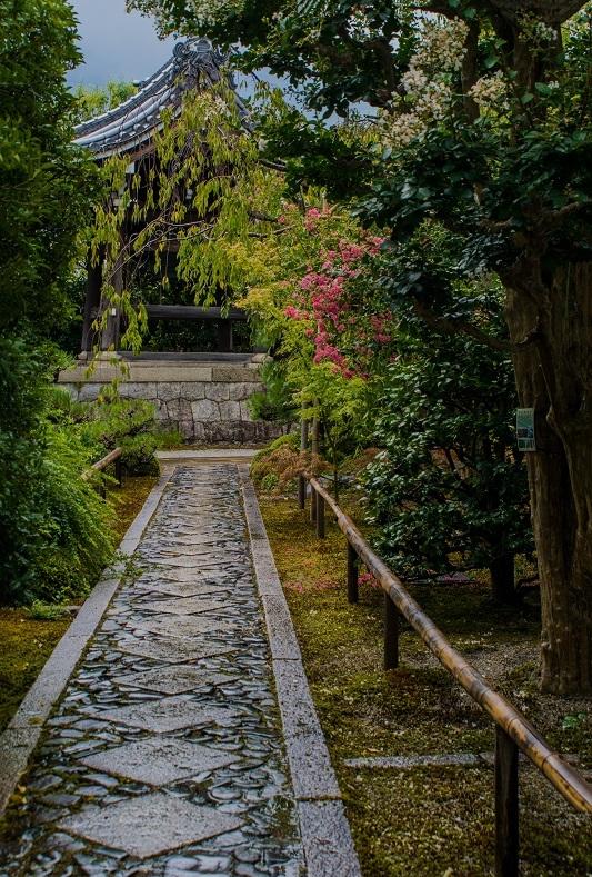 天寧寺~百日紅と額縁の門_e0363038_19291706.jpg