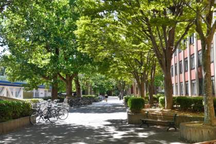 鳥取大学さんで.......夏休み期間とあってキャンパス内は........._b0194185_21391529.jpg