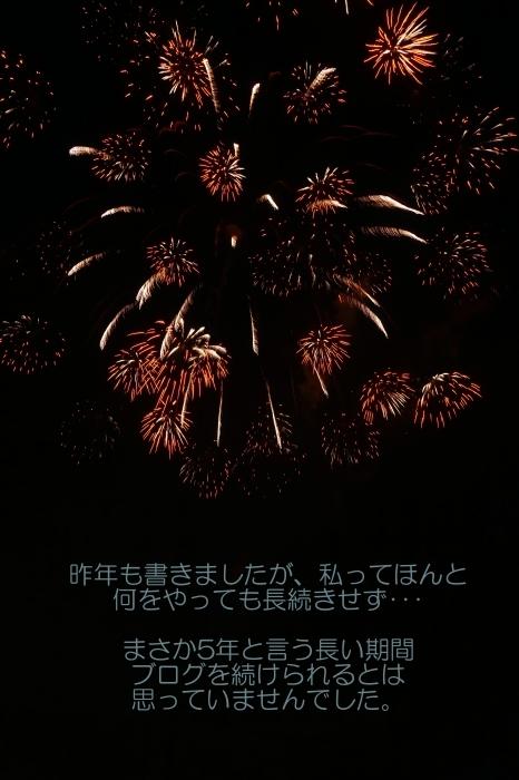 ちょこ家の日々☆ブログ開設5周年~♫_b0290816_00501384.jpg