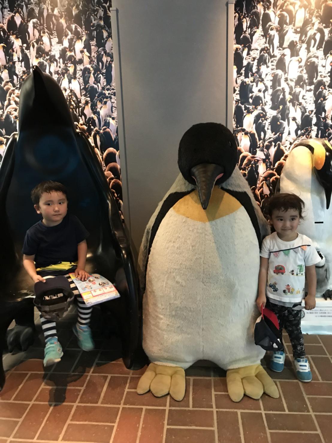ペンギン水族館に行ってきました♪_e0184224_08193014.jpg