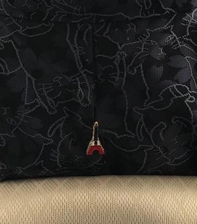 猫の紋紗の着物と、猫のバッグでフランスお城のホテルへ_f0181251_183454.jpg