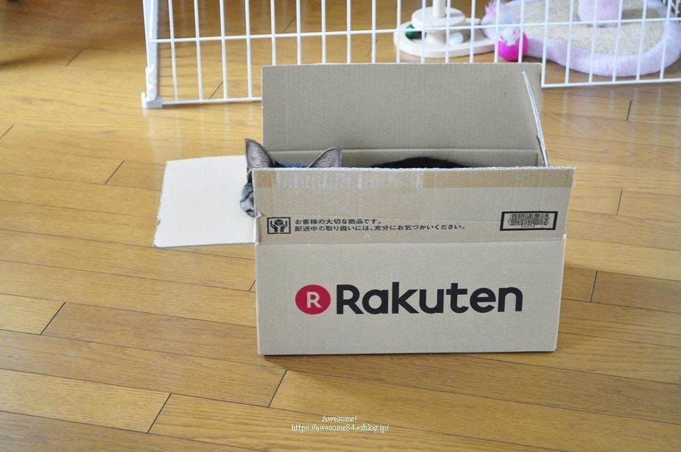 箱シリーズとリンネル付録_e0359481_16075223.jpg