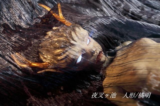 文豪・泉鏡花×球体関節人形 ~迷宮、神隠し、魔界の女~_c0183903_11342422.jpg