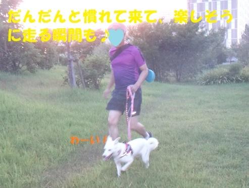 f0121712_14451959.jpg