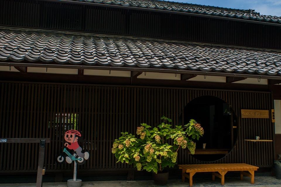 醒ヶ井宿 地蔵川に咲く梅花藻_e0363038_14183710.jpg