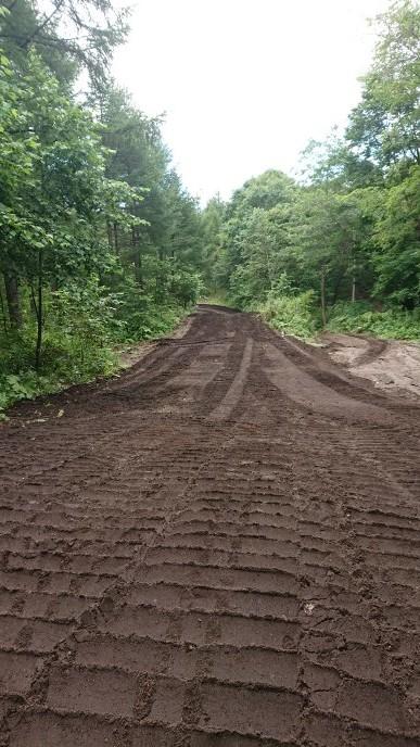 新たなる道&桂、林間コース整備_e0183255_03134427.jpg
