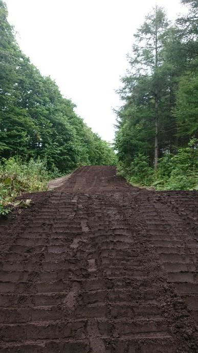 新たなる道&桂、林間コース整備_e0183255_03144005.jpg