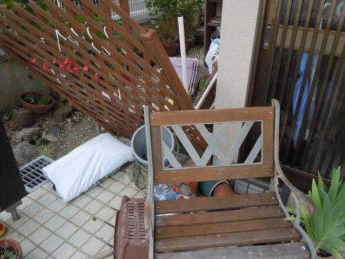 台風一過、被害はなかったが ・・・_b0102572_11492788.jpg