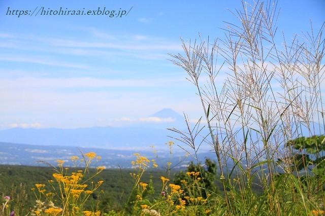 富士見高原リゾート花の里 ①富士山_f0374092_10390432.jpg