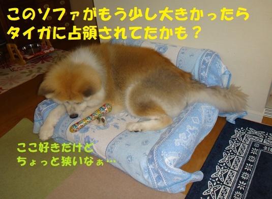 f0121712_15171775.jpg