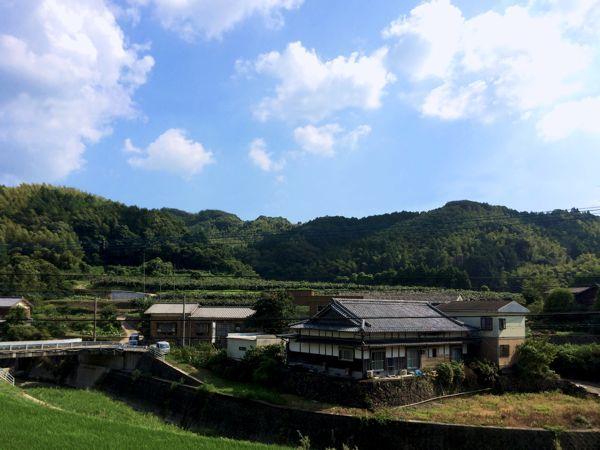 里山狭小house「キウイ畑を望むみかんhouse」完成見学会のお知らせです♪_e0029115_17355437.jpg