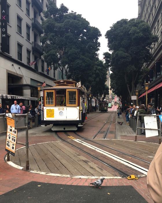 寒〜いサンフランシスコの夏/ The Usual Chilly Summer in San Francisco_e0310424_06565086.jpg