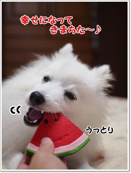 d0013149_00002557.jpg