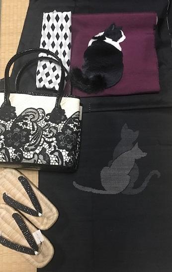 商品紹介・ふわふわ尻尾の本物のような白黒の猫の帯。_f0181251_1262466.jpg