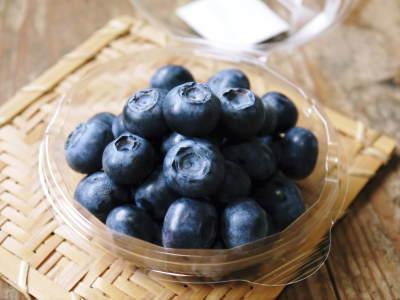 フレッシュブルーベリーが今まさに最旬!無農薬栽培の朝採りブルーベリーを即日発送でお届けします!_a0254656_17252620.jpg