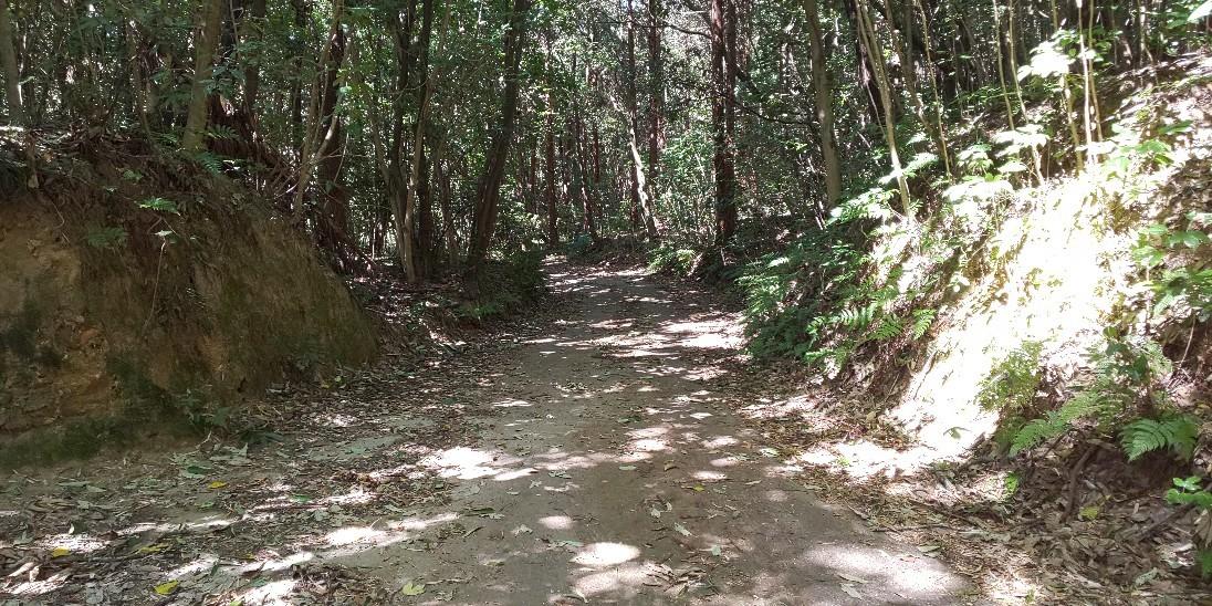 いつもの散歩コースで..._e0376933_14001028.jpg