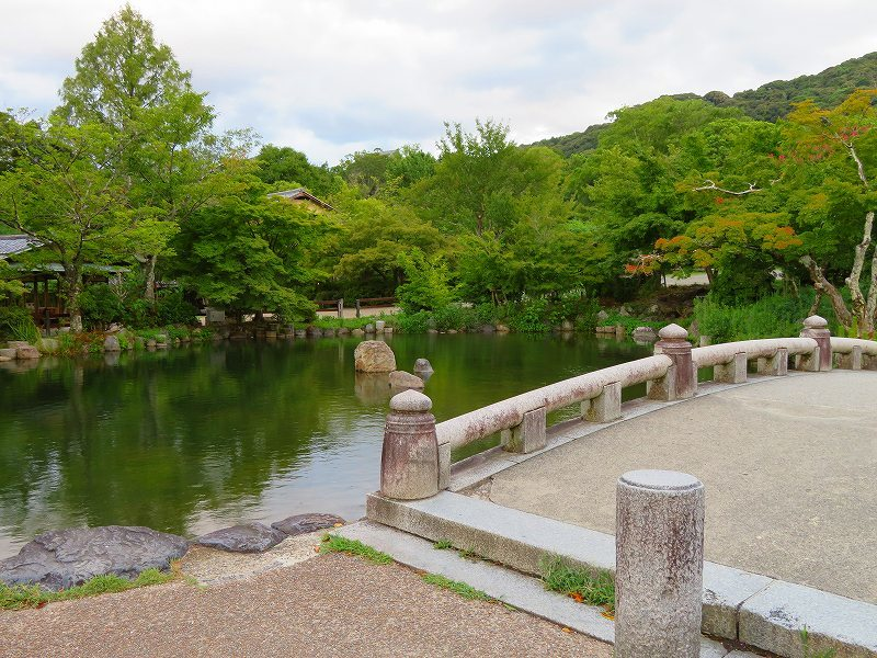夏の京都「円山公園」20180824_e0237645_00155532.jpg