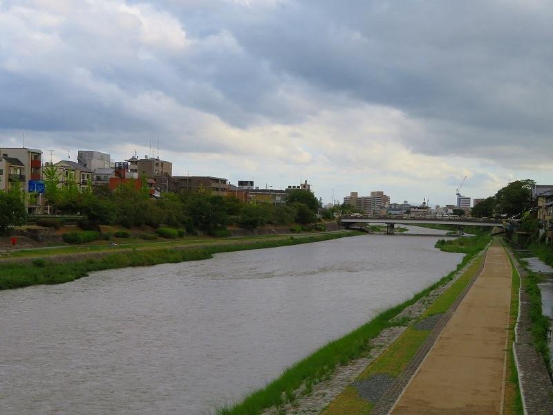 台風一過の「鴨川」20180824_e0237645_00500431.jpg