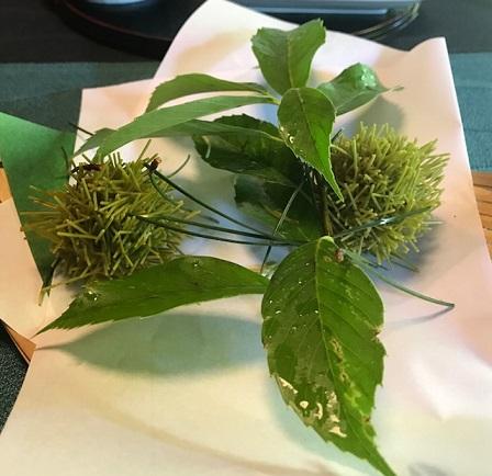 夏の着物で、お客様と普茶料理の閑臥庵 (かんがあん)へ_f0181251_143364.jpg