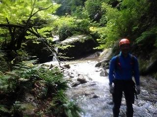 姉川支流矢谷から1110mピーク尾根下降_e0064783_20113860.jpg