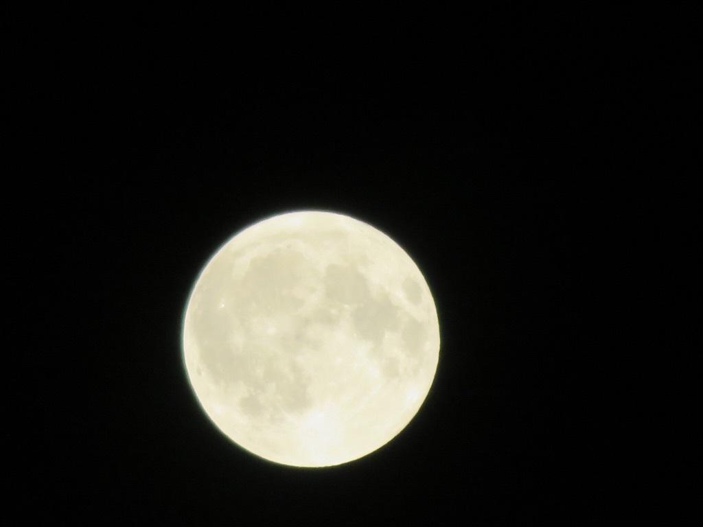 14番目の月と満月_f0204295_22060269.jpg