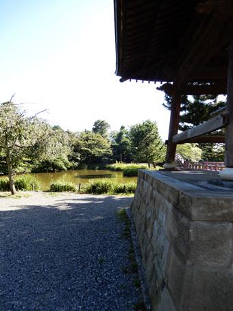金沢文庫の称名寺_c0195909_12223811.jpg