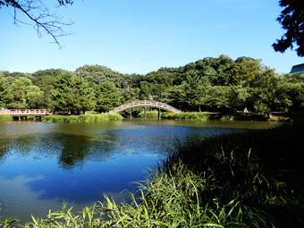 金沢文庫の称名寺_c0195909_12232578.jpg