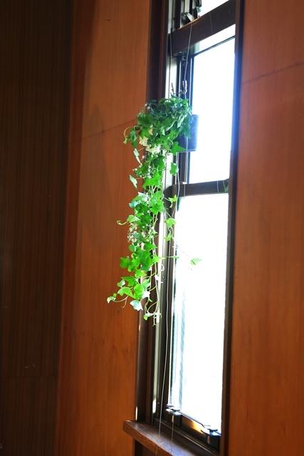 代官山の教会装花 本多記念教会様へ 一会夏の出張レッスン8月25日_a0042928_19334990.jpg