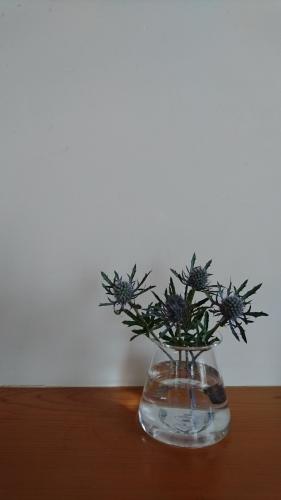 ガラスの花器_c0172049_09540357.jpg