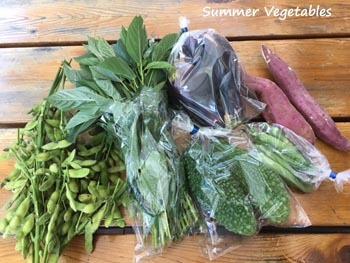 夏野菜_a0335352_13260491.jpg