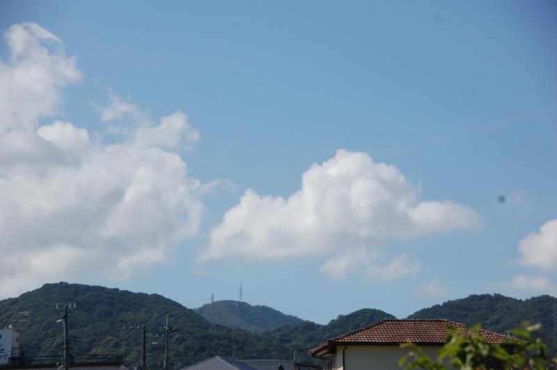 台風被害の片付け・・・我が家の畑_c0108460_15433833.jpg