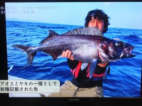 『情熱大陸』に出演の平坂寛さん_d0336460_10145059.jpg