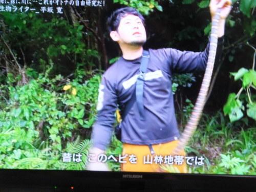 『情熱大陸』に出演の平坂寛さん_d0336460_10175781.jpg