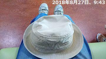 d0051601_15522118.jpg