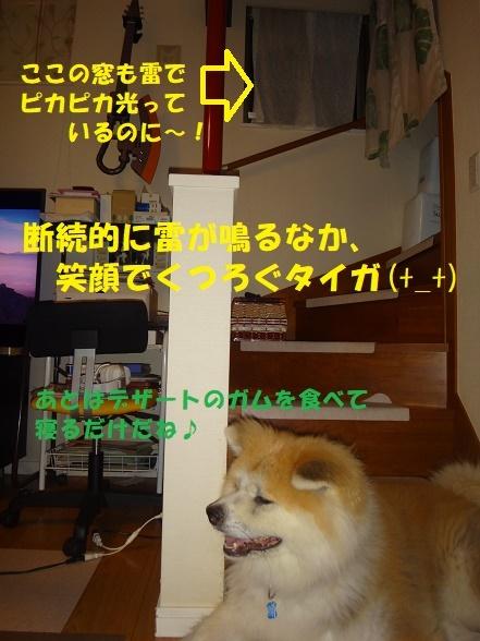 f0121712_14464031.jpg