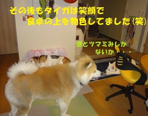 f0121712_14553001.jpg