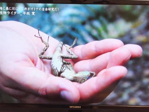 『情熱大陸』に出演の平坂寛さん_d0336460_10232568.jpg